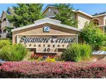2 Beds - Sycamore Terrace Apartments