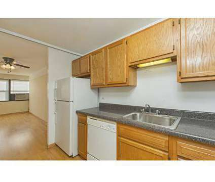 3 Beds - 833 W Buena Apartments at 833 West Buena Ave in Chicago IL is a Apartment