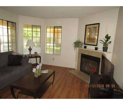 1 Bed - The Springs at 7511 N First St in Fresno CA is a Apartment