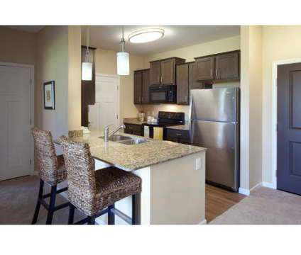 2 Beds - Skye at Arbor Lakes at 11851 Central Park Way in Maple Grove MN is a Apartment