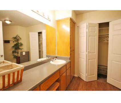 1 Bed - Arbor Hill at 250 Heimer Road in San Antonio TX is a Apartment