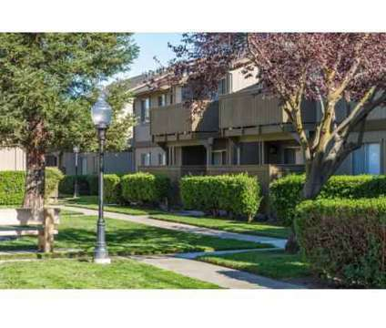 2 Beds - The Sycamores at 901 Sara Ct in Vacaville CA is a Apartment