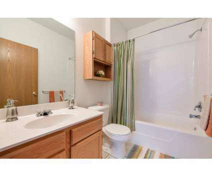 1 Bed - Settler's Landing at 725 Bridgeport Ave in Streetsboro OH is a Apartment