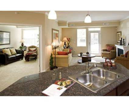 2 Beds - Citywalk at Woodbury at 10300 Citywalk Dr in Woodbury MN is a Apartment