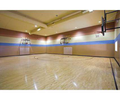 2 Beds - Citywalk at Woodbury at 10225 Citywalk Dr in Woodbury MN is a Apartment
