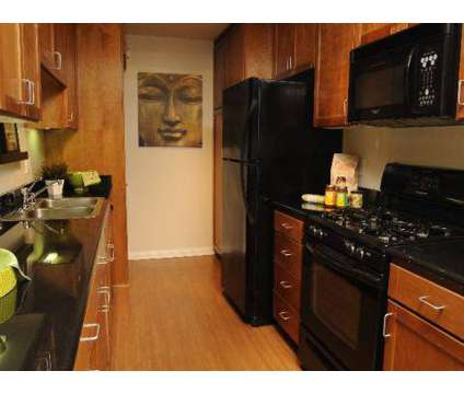 Studio - City Lights on Fig at 1300 S Figueroa St in Los Angeles CA is a Apartment