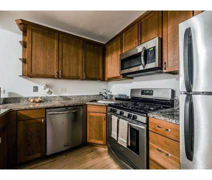 1 Bed - 215 E Chestnut Apartments at 215 E Chestnut St in Chicago IL is a Apartment