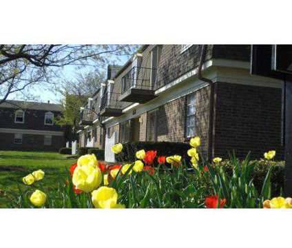1 Bed - Fayette Crossing at 249 East Reynolds Rd in Lexington KY is a Apartment
