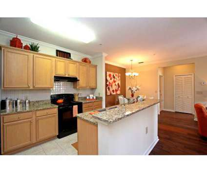1 Bed - The Lakes at Brandon West at 10011 Balaye Run Dr in Brandon FL is a Apartment