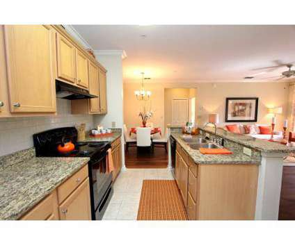 2 Beds - The Lakes at Brandon West at 10011 Balaye Run Dr in Brandon FL is a Apartment