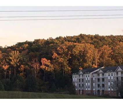 3 Beds - Orchard Mills at 15131 Brickwood Dr in Woodbridge VA is a Apartment