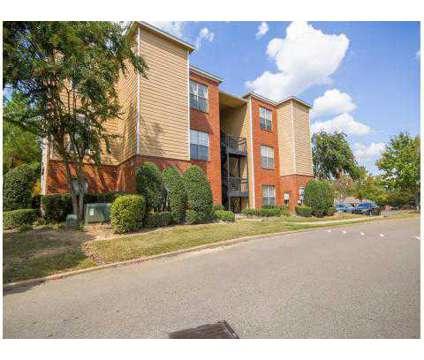1 Bed - Walnut Hill at 8920 Walnut Grove Road in Cordova TN is a Apartment