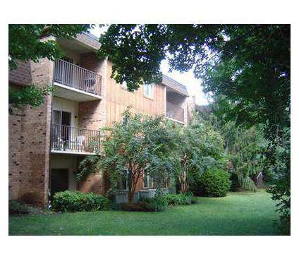 4 Beds - University Heights Apartments at 250 Colonnade Dr in Charlottesville VA is a Apartment