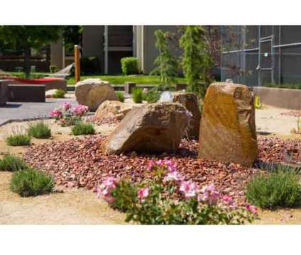 1 Bed - Brighton Place at 135 West Plumtree Ln in Midvale UT is a Apartment