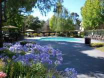 2 Beds - Club Pacifica Apartment Homes