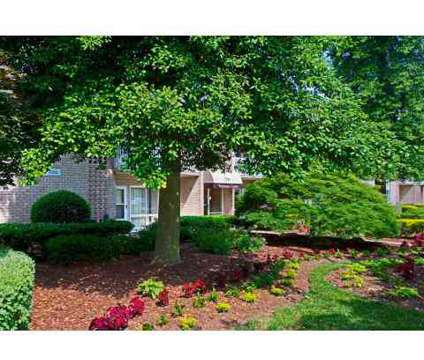 2 Beds - North Shore Gardens at 7701 Enfield Avenue in Norfolk VA is a Apartment