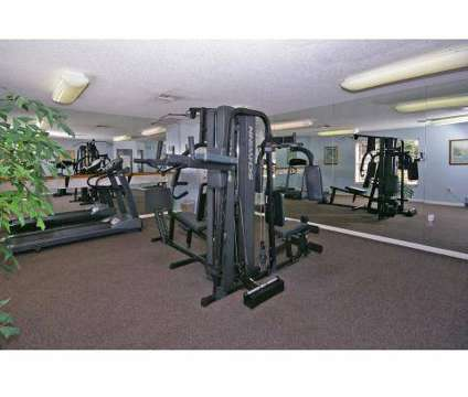 1 Bed - Coral Palms Apartments at 4539 Coral Palms Ln in Naples FL is a Apartment