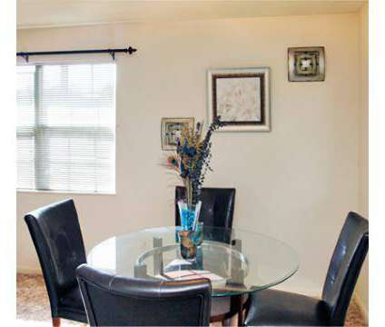 1 Bed - Olympic Village at 815 Pecan Point Road in Norfolk VA is a Apartment