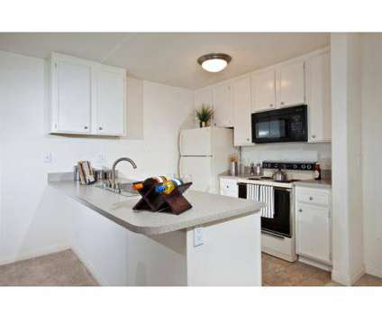 3 Beds - Elan Cardiff By The Sea at 2170 Carol View Dr in Cardiff By The Sea CA is a Apartment