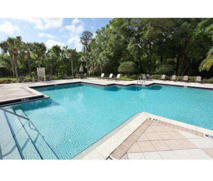 1 Bed - Cypress Grand at 8134 Colonial Village Dr in Tampa FL is a Apartment