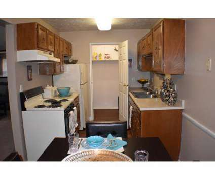 1 Bed - Deer Creek Apartments at 4415 Deer Creek Ct in Youngstown OH is a Apartment