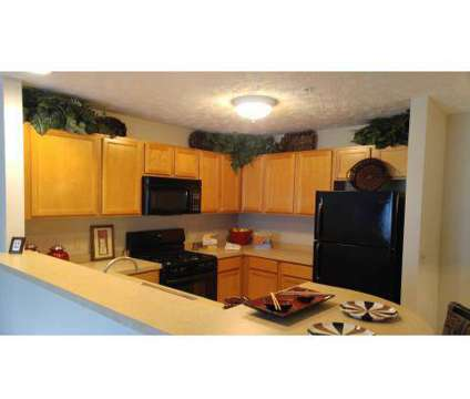 1 Bed - Stone Ridge Apartment Homes at 1000 Stone Ridge Cir in Berea OH is a Apartment