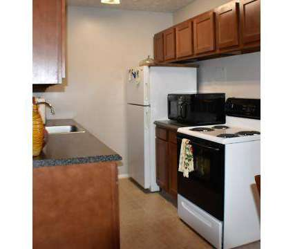 1 Bed - Lakeway Woods at 5840 Buckeye Ln in Mentor OH is a Apartment