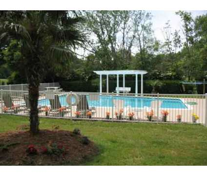 2 Beds - Royal Mace Apartments at 9621 Chesapeake Boulevard in Norfolk VA is a Apartment