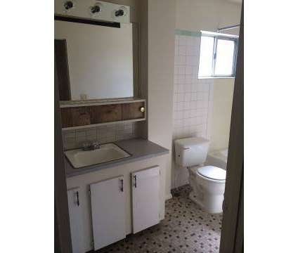 1 Bed - Shoreline Beach Club at 669 Carnegie Ave in Akron OH is a Apartment