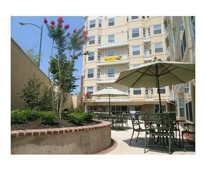 2 Beds - Park Plaza at Belvidere at 515 West Franklin St in Richmond VA is a Apartment