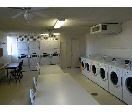 1 Bed - Bella Flora Apartments at 6160 East Bellevue St in Tucson AZ is a Apartment