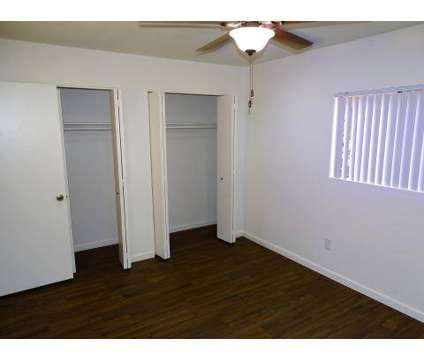 1 Bed - Desert Palms Apartments at 3125 N Alvernon Way in Tucson AZ is a Apartment
