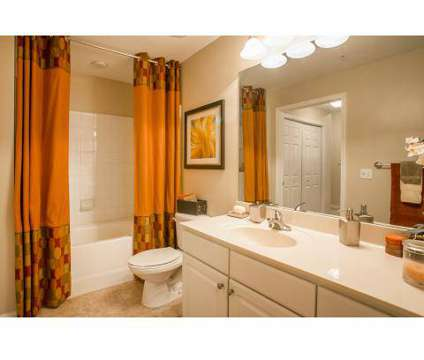 1 Bed - The Savoy at 4306 N Shallowford Road in Atlanta GA is a Apartment