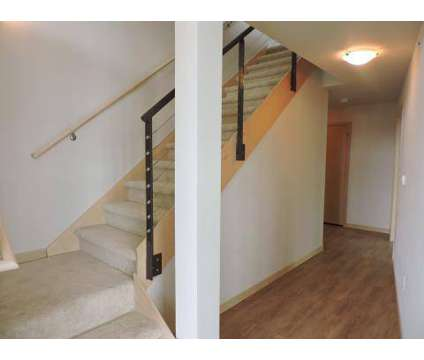 1 Bed - The Dude Abodes at 902 Drake St in Madison WI is a Apartment