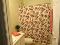 1 Bed - Sage Pointe Apartments/Sage Pointe Townhomes