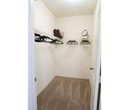 3 Beds - IMT Tuscany Bay at 12065 Tuscany Bay Dr in Tampa FL is a Apartment
