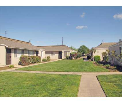 1 Bed - Ashbrier / Sandalwood at 5040 E Ashlan in Fresno CA is a Apartment