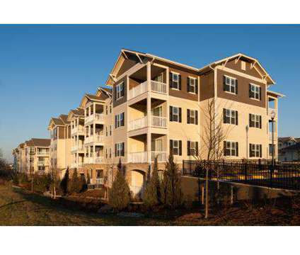1 Bed - River Oaks at 2940 Shumard Oak Dr in Woodbridge VA is a Apartment