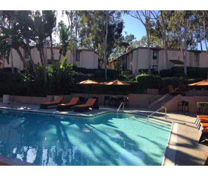 1 Bed - El Norte Villas at 1051 West El Norte Parkway in Escondido CA is a Apartment