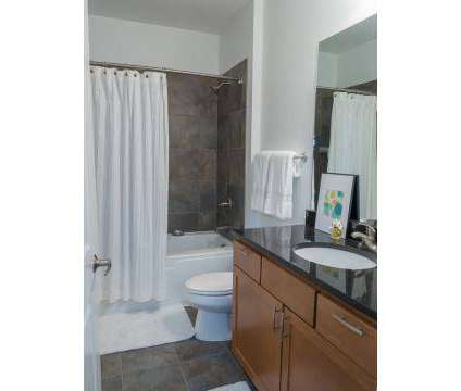 1 Bed - Icon on Bond at 538 Bond Avenue Nw in Grand Rapids MI is a Apartment