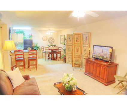 1 Bed - Carefree at the Willows at 3250 Town Center Dr in Las Vegas NV is a Apartment