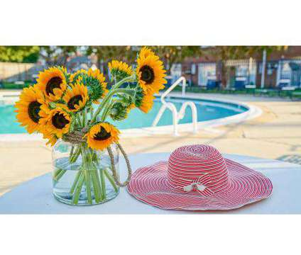 2 Beds - Diamond Springs Apartments & Townhomes at 5800 Bangor Square in Virginia Beach VA is a Apartment