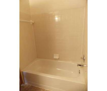 1 Bed - Timber Creek Village Apartments at 3264 Green Meadows St in Columbus OH is a Apartment