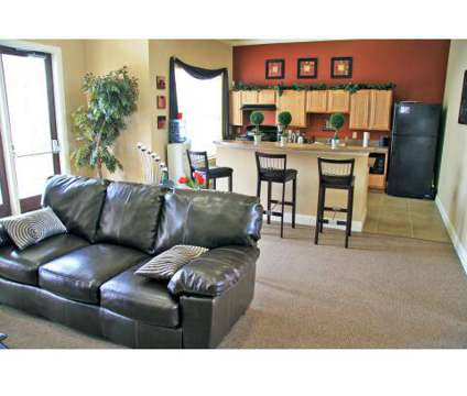 1 Bed - La Sierra at 520 Fm 306 in New Braunfels TX is a Apartment
