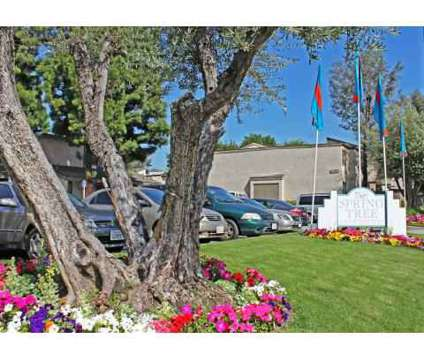 Studio - Spring Tree at 12350 Marshall Avenue in Chino CA is a Apartment