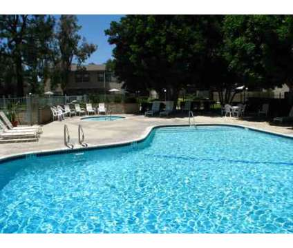 1 Bed - Spring Tree at 12350 Marshall Avenue in Chino CA is a Apartment