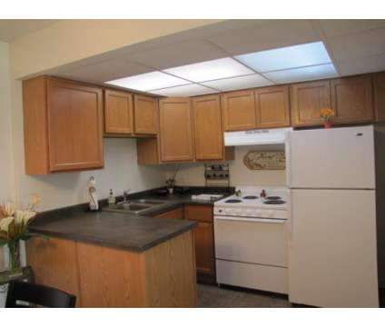 1 Bed - Regent's Park Apartments at 930 W Irving Park Rd in Bensenville IL is a Apartment