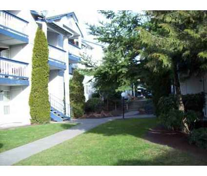 1 Bed - Garden Pointe at 130 Sw 112th St in Seattle WA is a Apartment
