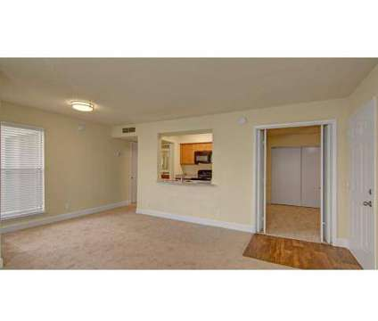 1 Bed - Motif Apartment Homes at 2529 West Cactus Rd in Phoenix AZ is a Apartment