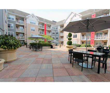 1 Bed - Village at Stamford at 500 Bedford St in Stamford CT is a Apartment